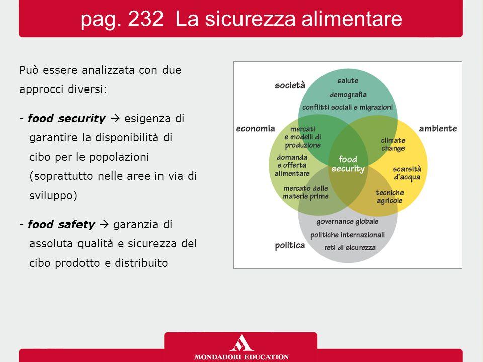 Può essere analizzata con due approcci diversi: - food security  esigenza di garantire la disponibilità di cibo per le popolazioni (soprattutto nelle