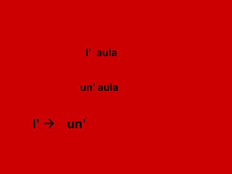 Definite article (singular) Indefinite article (a/an) masculineilun uno l' lo femininelauna un' l' Summary: