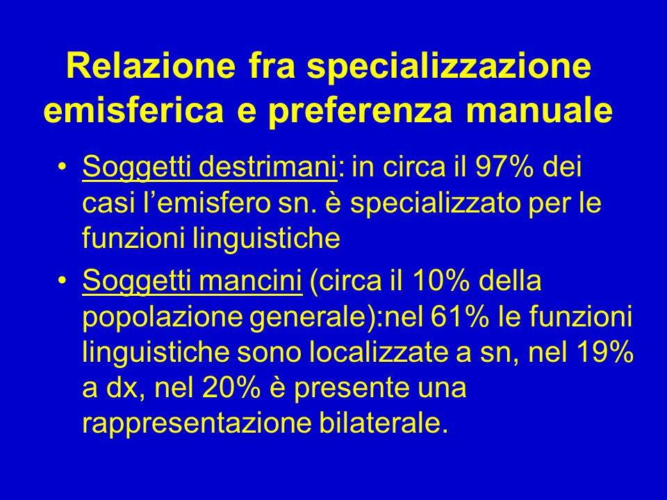 Relazione fra specializzazione emisferica e preferenza manuale Soggetti destrimani: in circa il 97% dei casi l'emisfero sn. è specializzato per le fun