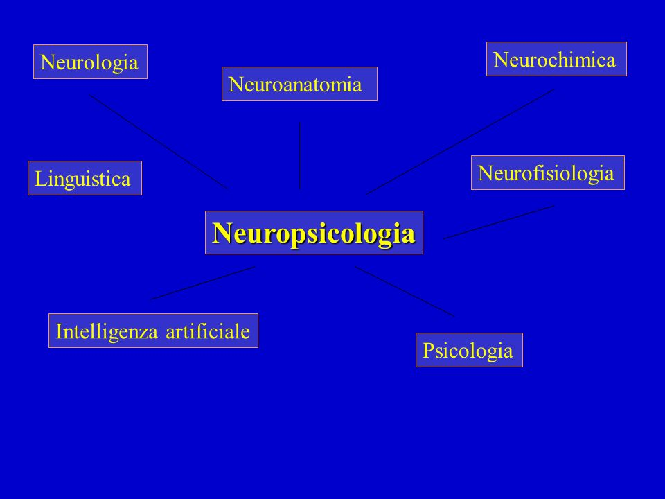 Relazione fra specializzazione emisferica e preferenza manuale Soggetti destrimani: in circa il 97% dei casi l'emisfero sn.