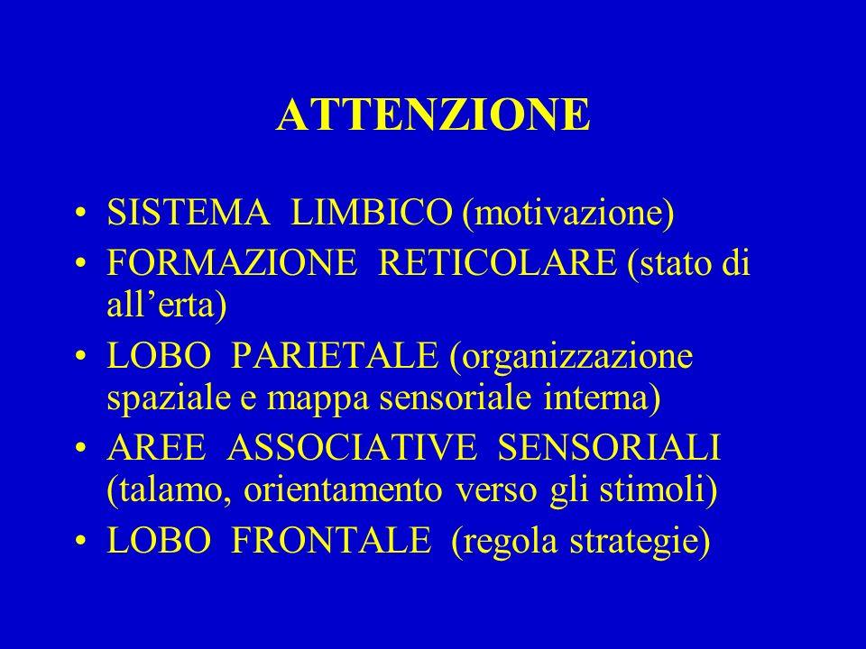 ATTENZIONE SISTEMA LIMBICO (motivazione) FORMAZIONE RETICOLARE (stato di all'erta) LOBO PARIETALE (organizzazione spaziale e mappa sensoriale interna)
