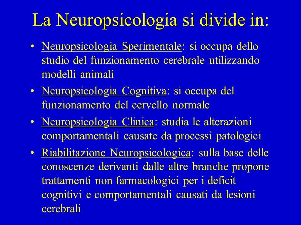 Le aree di ricerca Lo studio delle basi neurali delle funzioni mentali: vengono utilizzati i metodi della correlazione anatomo- clinica, sviluppato a a partire dalla prima metà dell'ottocento, ed i più recenti metodi di neuroimaging funzionale ed attivazione (Neuropsicologia clinica) Lo studio della funzione mentale in quanto tale: l'esame di pazienti con disturbi cognitivi specifici può essere utile per spiegare le proprietà funzionali dell'attività mentale, anche indipendentemente dai suoi correlati neurali (Neuropsicologia Cognitiva)