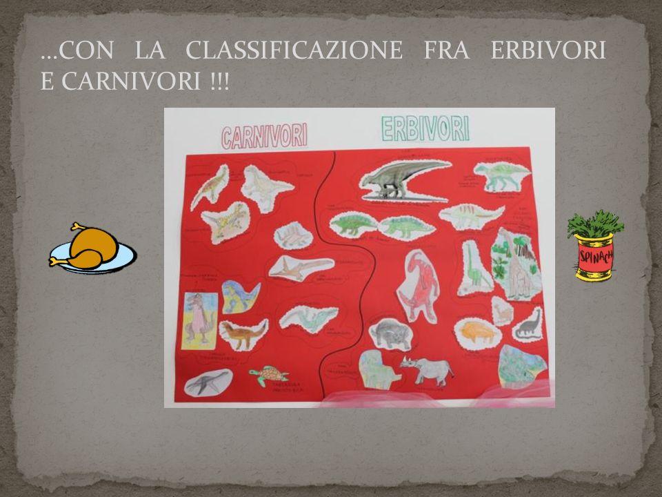 …CON LA CLASSIFICAZIONE FRA ERBIVORI E CARNIVORI !!!