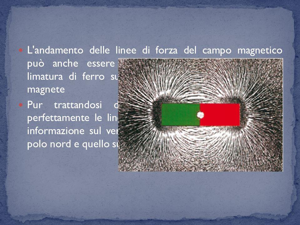 L'andamento delle linee di forza del campo magnetico può anche essere visualizzato facendo cadere della limatura di ferro su un foglio di carta posto