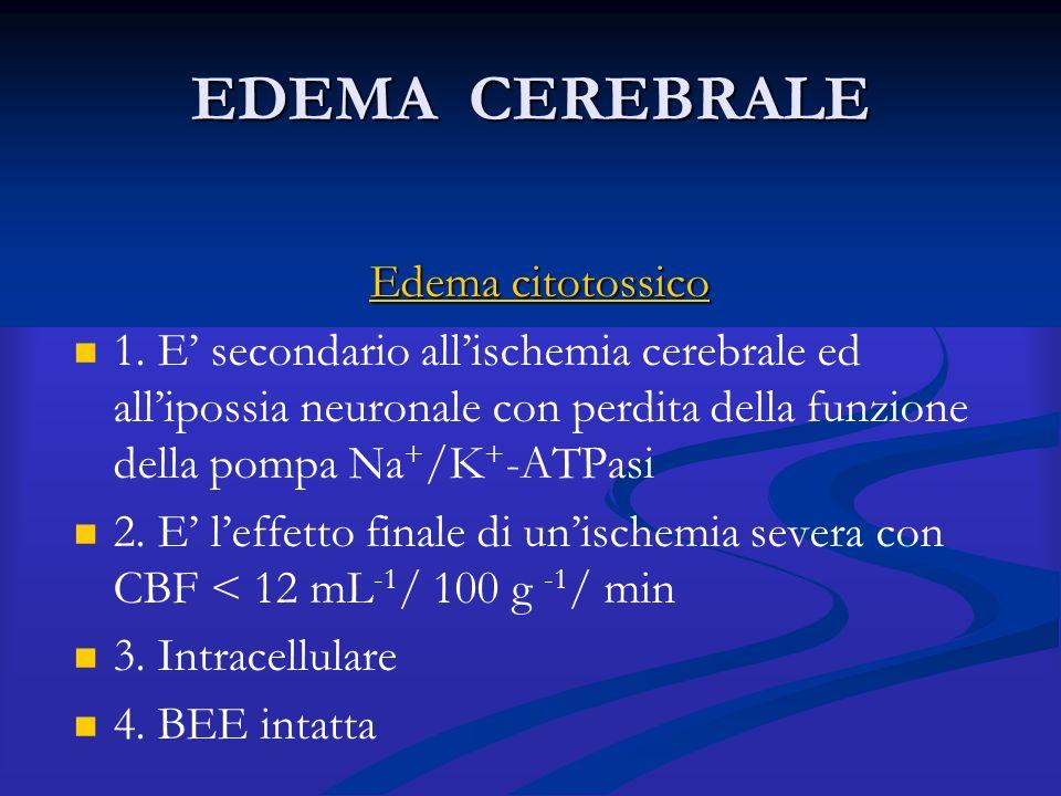 EDEMA CEREBRALE Edema citotossico 1. E' secondario all'ischemia cerebrale ed all'ipossia neuronale con perdita della funzione della pompa Na + /K + -A