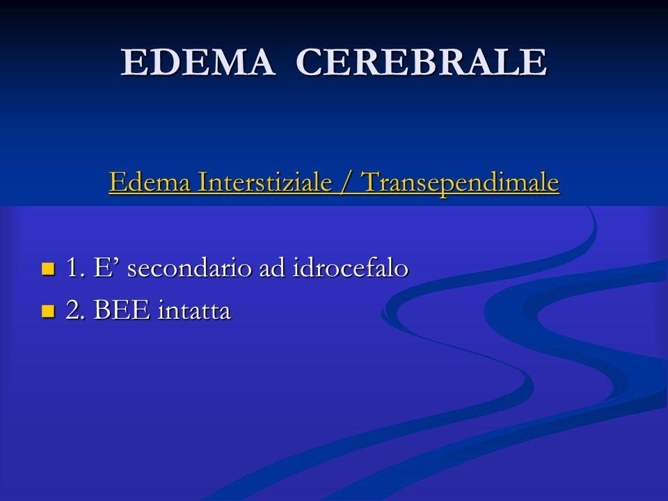EDEMA CEREBRALE Edema Interstiziale / Transependimale 1. E' secondario ad idrocefalo 1. E' secondario ad idrocefalo 2. BEE intatta 2. BEE intatta