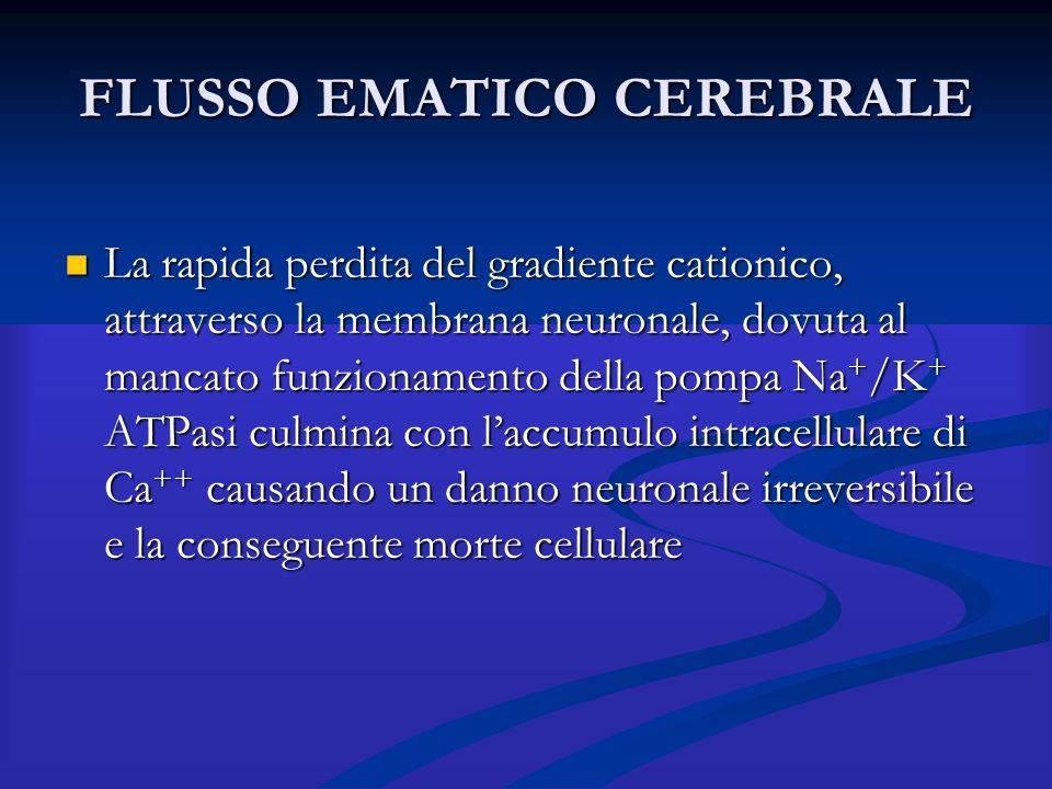 FLUSSO EMATICO CEREBRALE La rapida perdita del gradiente cationico, attraverso la membrana neuronale, dovuta al mancato funzionamento della pompa Na +