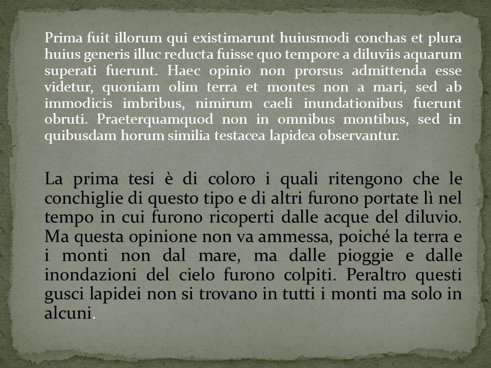 Prima fuit illorum qui existimarunt huiusmodi conchas et plura huius generis illuc reducta fuisse quo tempore a diluviis aquarum superati fuerunt. Hae