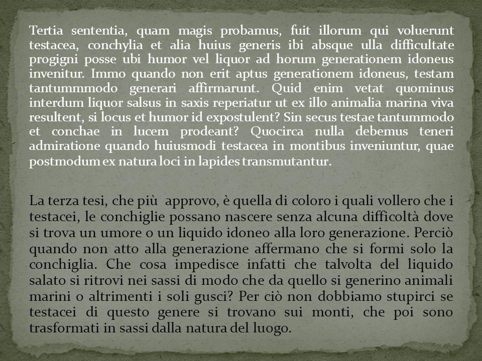 Tertia sententia, quam magis probamus, fuit illorum qui voluerunt testacea, conchylia et alia huius generis ibi absque ulla difficultate progigni poss