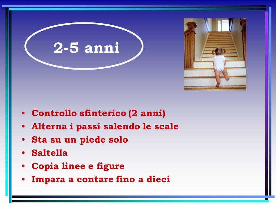 Controllo sfinterico (2 anni) Alterna i passi salendo le scale Sta su un piede solo Saltella Copia linee e figure Impara a contare fino a dieci 2-5 an