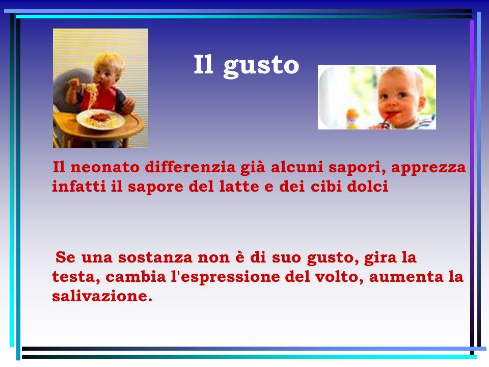 Il gusto Il neonato differenzia già alcuni sapori, apprezza infatti il sapore del latte e dei cibi dolci Se una sostanza non è di suo gusto, gira la t