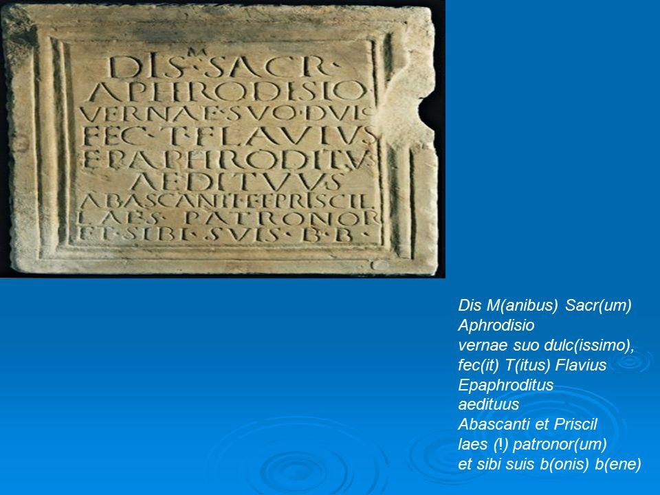 Dis M(anibus) Sacr(um) Aphrodisio vernae suo dulc(issimo), fec(it) T(itus) Flavius Epaphroditus aedituus Abascanti et Priscil laes (!) patronor(um) et