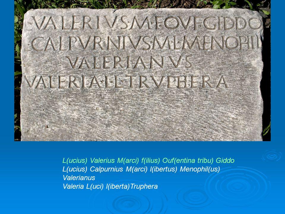 L(ucius) Valerius M(arci) f(ilius) Ouf(entina tribu) Giddo L(ucius) Calpurnius M(arci) l(ibertus) Menophil(us) Valerianus Valeria L(uci) l(iberta)Trup