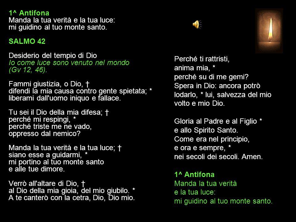 4 AGOSTO 2015 MARTEDÌ - II SETTIMANA DEL SALTERIO DEL T.