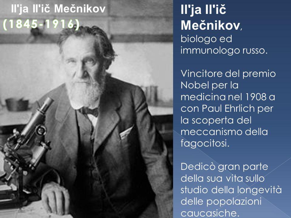 Il'ja Il'ič Mečnikov, biologo ed immunologo russo. Vincitore del premio Nobel per la medicina nel 1908 a con Paul Ehrlich per la scoperta del meccanis