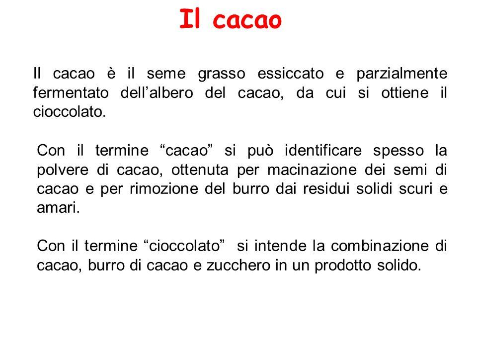 """Il cacao Il cacao è il seme grasso essiccato e parzialmente fermentato dell'albero del cacao, da cui si ottiene il cioccolato. Con il termine """"cacao"""""""