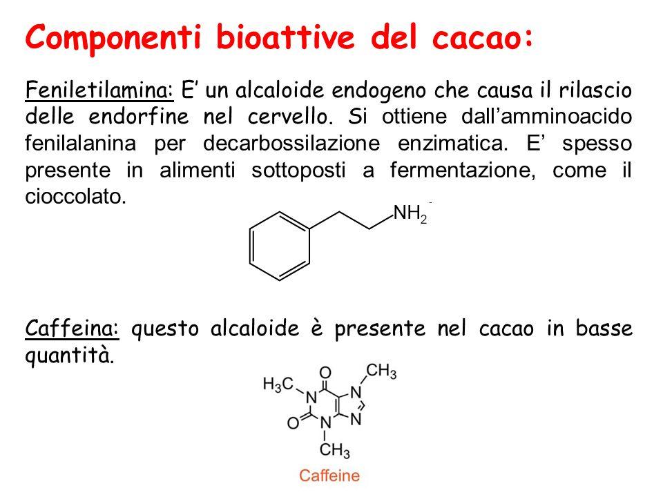 Componenti bioattive del cacao: Feniletilamina: E' un alcaloide endogeno che causa il rilascio delle endorfine nel cervello. S i ottiene dall'amminoac