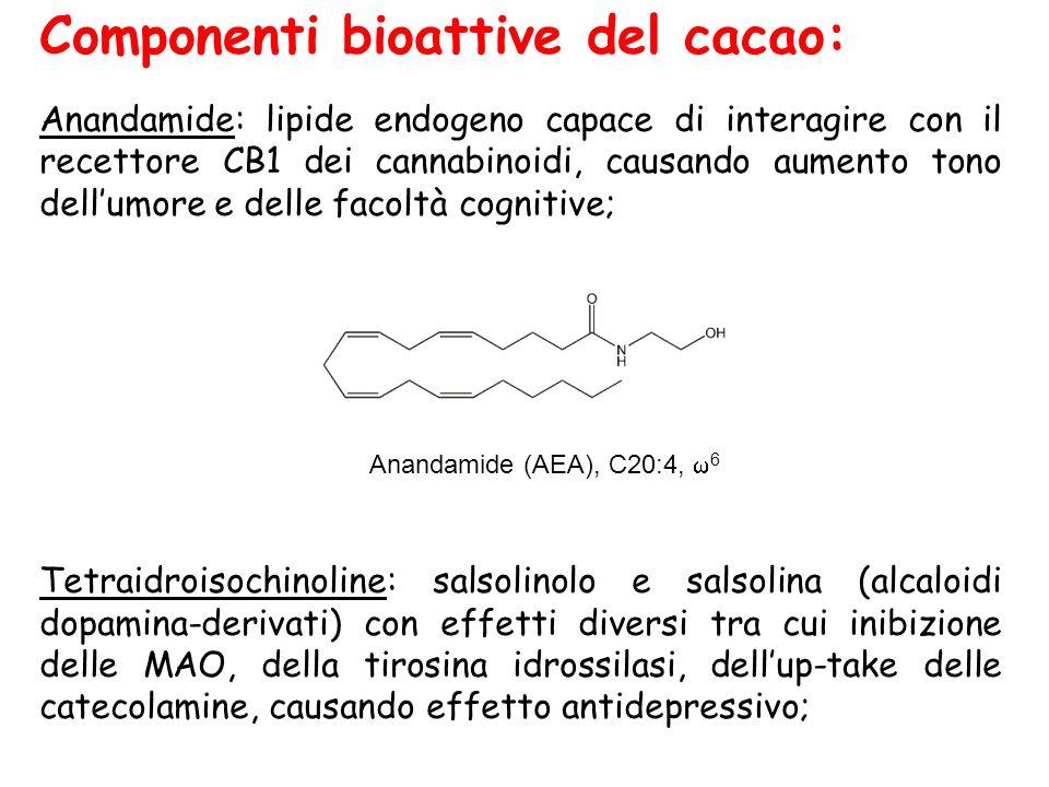 Componenti bioattive del cacao: Anandamide: lipide endogeno capace di interagire con il recettore CB1 dei cannabinoidi, causando aumento tono dell'umo