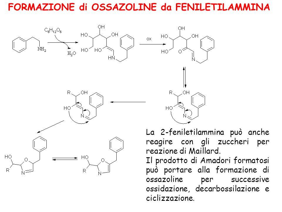 La 2-feniletilammina può anche reagire con gli zuccheri per reazione di Maillard. Il prodotto di Amadori formatosi può portare alla formazione di ossa