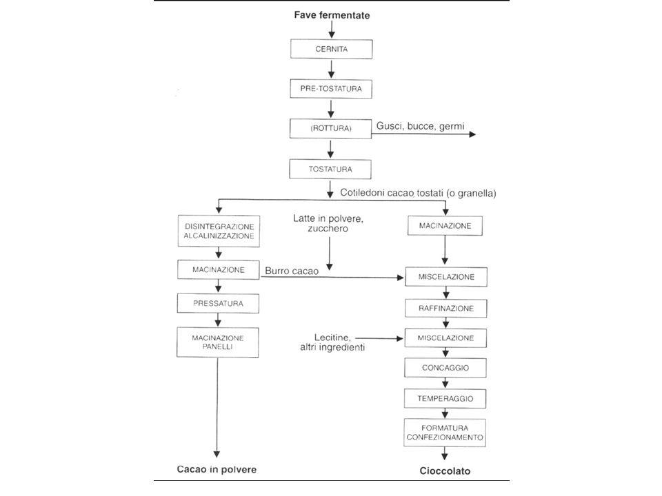 Nell'organismo, la taurina è coniugata mediante il gruppo ammino-terminale con gli acidi biliari.