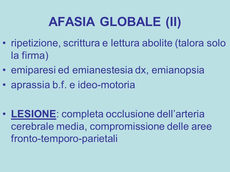 AFASIA GLOBALE (II) ripetizione, scrittura e lettura abolite (talora solo la firma) emiparesi ed emianestesia dx, emianopsia aprassia b.f. e ideo-moto