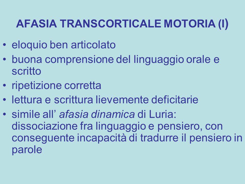 AFASIA TRANSCORTICALE MOTORIA (I ) eloquio ben articolato buona comprensione del linguaggio orale e scritto ripetizione corretta lettura e scrittura l