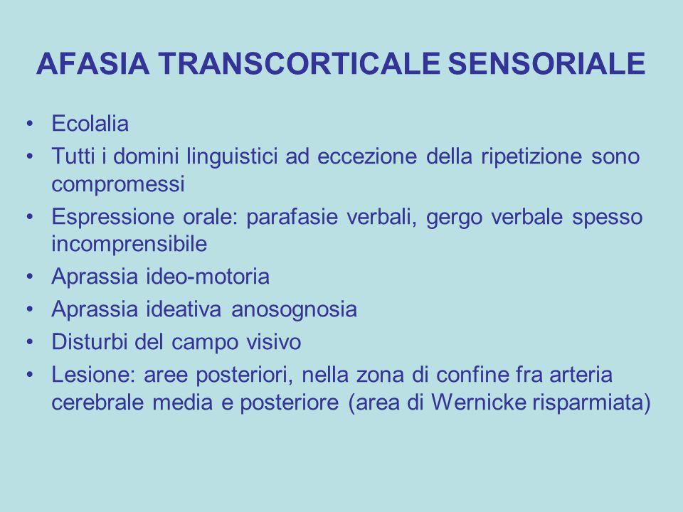AFASIA TRANSCORTICALE SENSORIALE Ecolalia Tutti i domini linguistici ad eccezione della ripetizione sono compromessi Espressione orale: parafasie verb