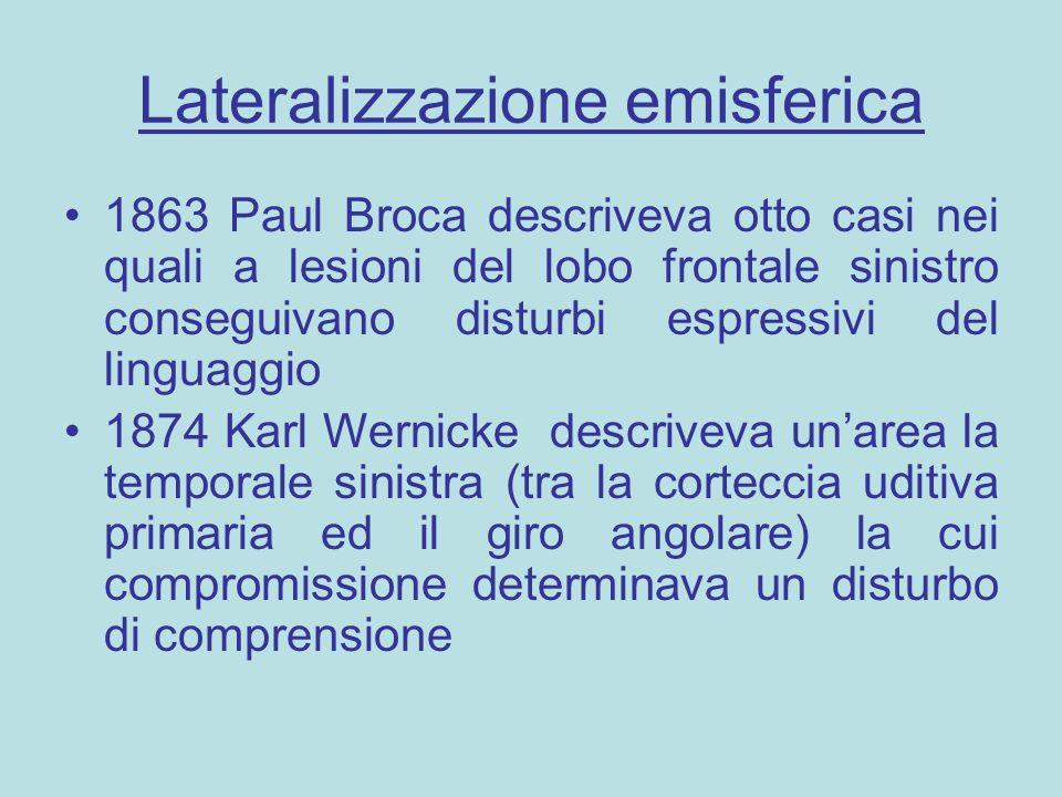 Lateralizzazione emisferica 1863 Paul Broca descriveva otto casi nei quali a lesioni del lobo frontale sinistro conseguivano disturbi espressivi del l