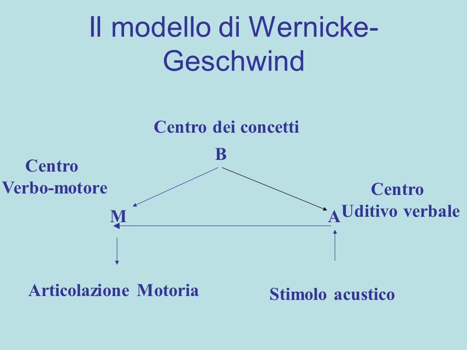 Il modello di Wernicke- Geschwind Stimolo acustico Articolazione Motoria Centro Uditivo verbale Centro Verbo-motore AM B Centro dei concetti