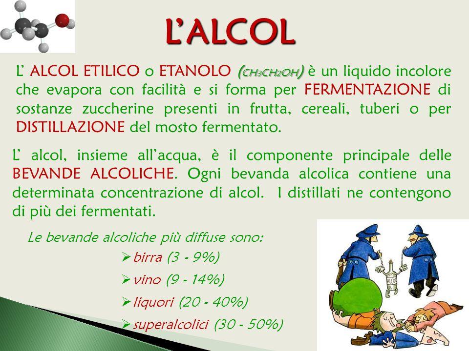 ( CH 3 CH 2 OH ) L' ALCOL ETILICO o ETANOLO ( CH 3 CH 2 OH ) è un liquido incolore che evapora con facilità e si forma per FERMENTAZIONE di sostanze zuccherine presenti in frutta, cereali, tuberi o per DISTILLAZIONE del mosto fermentato.