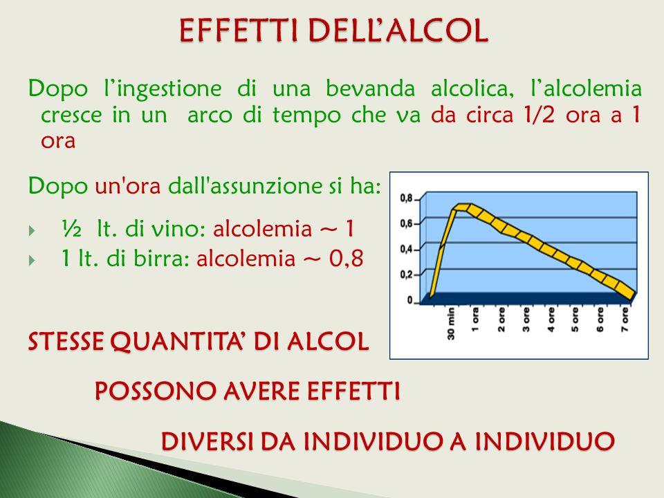 Dopo l'ingestione di una bevanda alcolica, l'alcolemia cresce in un arco di tempo che va da circa 1/2 ora a 1 ora Dopo un ora dall assunzione si ha:  ½ lt.