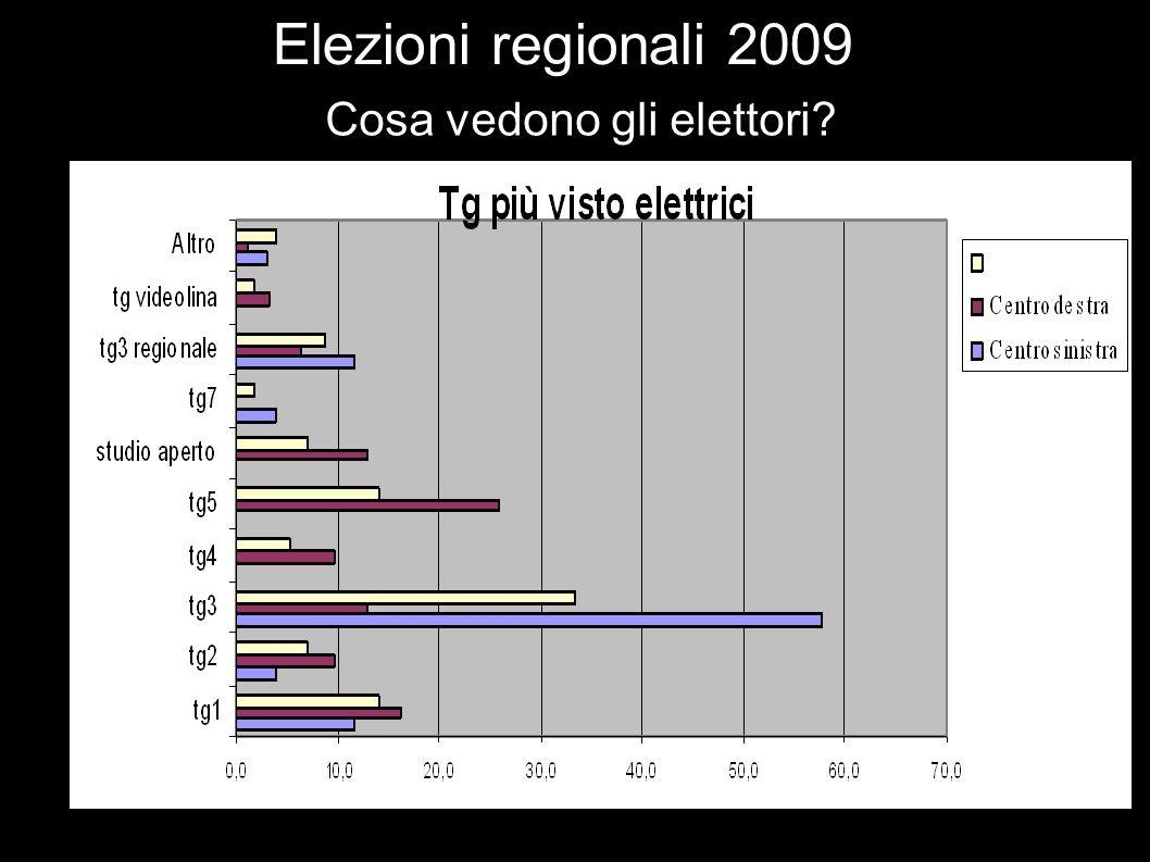 Elezioni regionali 2009 Cosa vedono gli elettori
