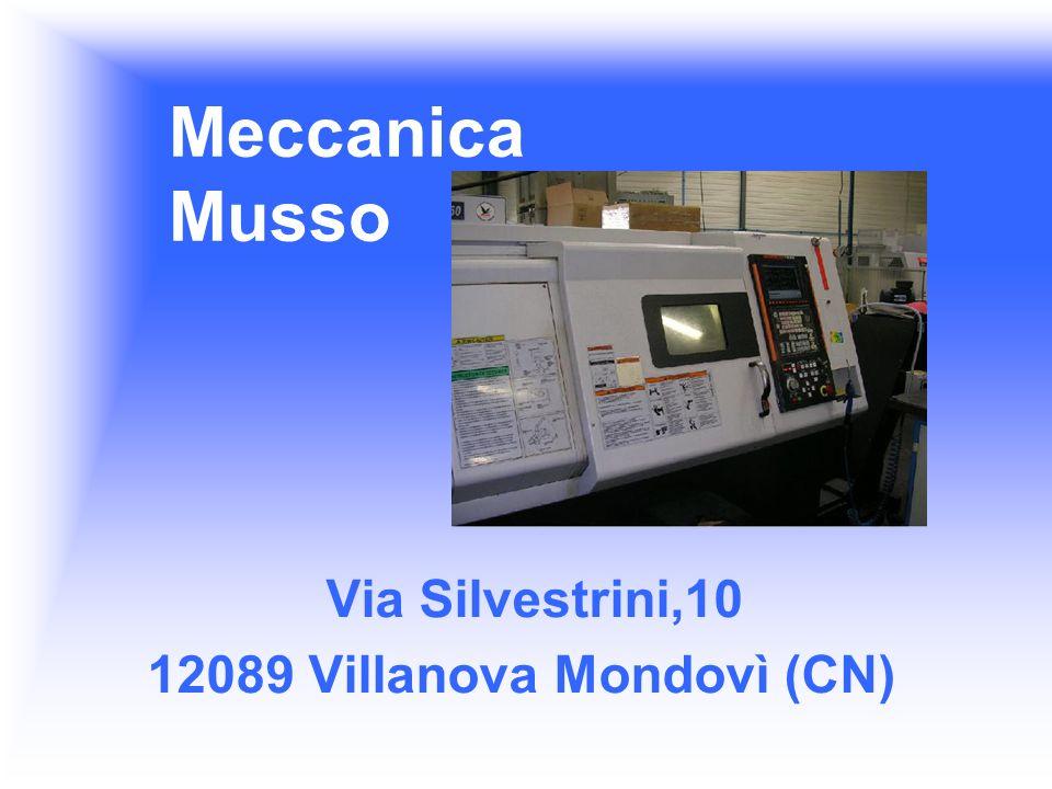 Meccanica Musso Via Silvestrini,10 12089 Villanova Mondovì (CN)