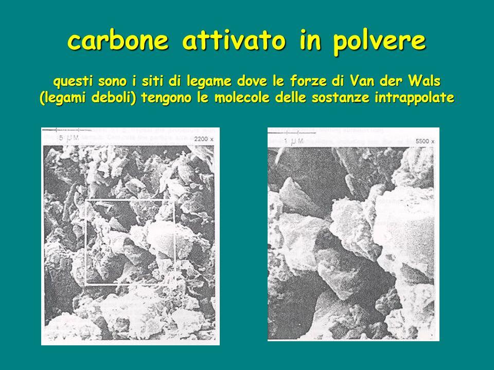 carbone attivato in polvere questi sono i siti di legame dove le forze di Van der Wals (legami deboli) tengono le molecole delle sostanze intrappolate