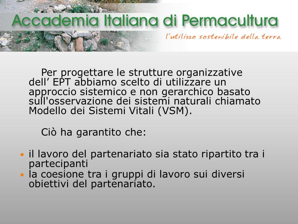Per progettare le strutture organizzative dell' EPT abbiamo scelto di utilizzare un approccio sistemico e non gerarchico basato sull osservazione dei sistemi naturali chiamato Modello dei Sistemi Vitali (VSM).