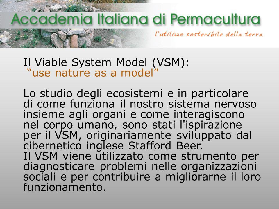 Il Viable System Model (VSM): use nature as a model Lo studio degli ecosistemi e in particolare di come funziona il nostro sistema nervoso insieme agli organi e come interagiscono nel corpo umano, sono stati l ispirazione per il VSM, originariamente sviluppato dal cibernetico inglese Stafford Beer.