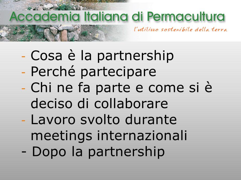 - Cosa è la partnership - Perché partecipare - Chi ne fa parte e come si è deciso di collaborare - Lavoro svolto durante meetings internazionali - Dopo la partnership