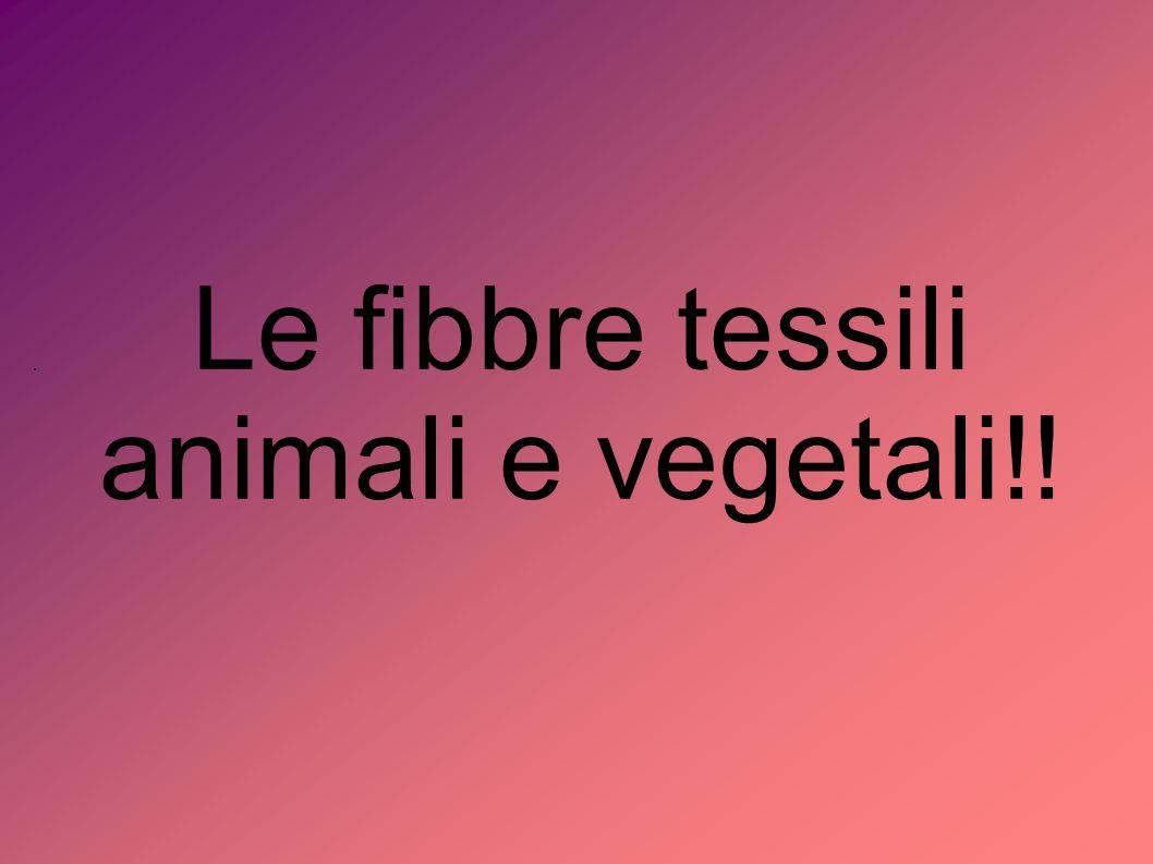Le fibbre tessili animali e vegetali!!.