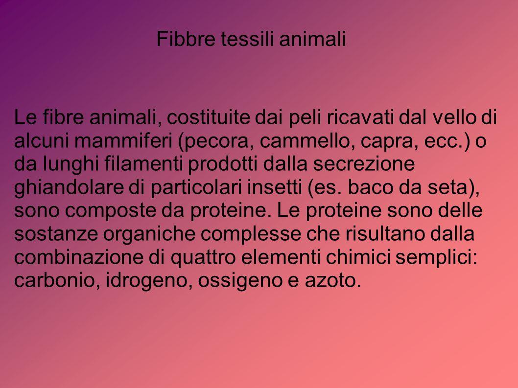 Fibbre tessili animali Le fibre animali, costituite dai peli ricavati dal vello di alcuni mammiferi (pecora, cammello, capra, ecc.) o da lunghi filame