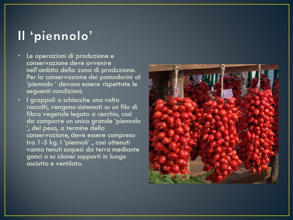 Le operazioni di produzione e conservazione deve avvenire nell'ambito della zona di produzione. Per la conservazione dei pomodorini al 'piennolo ' dev