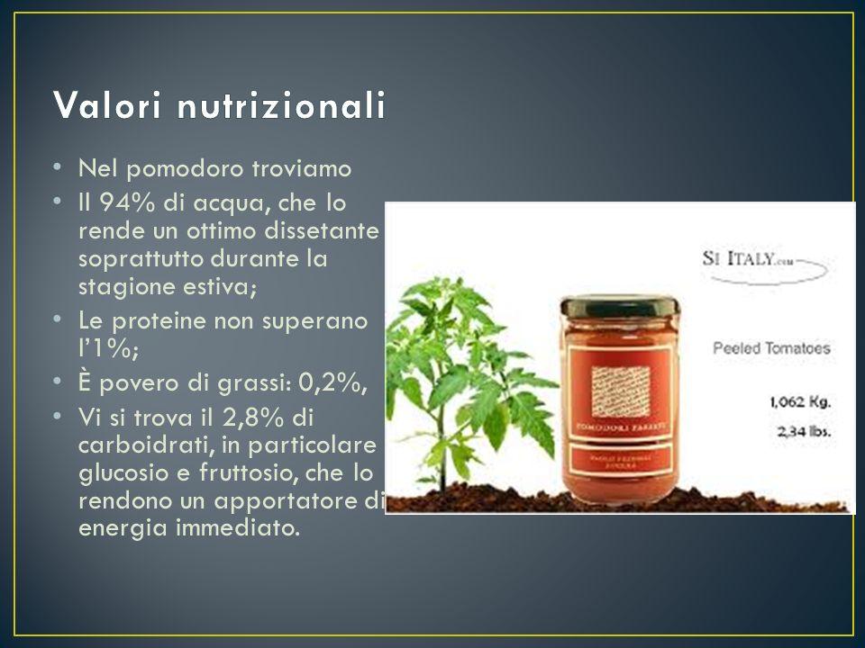 Nel pomodoro troviamo Il 94% di acqua, che lo rende un ottimo dissetante soprattutto durante la stagione estiva; Le proteine non superano l'1%; È pove