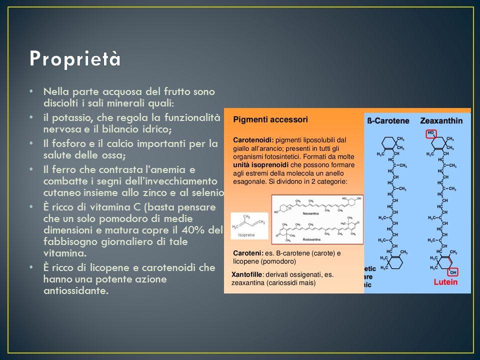 Nella parte acquosa del frutto sono disciolti i sali minerali quali: il potassio, che regola la funzionalità nervosa e il bilancio idrico; Il fosforo
