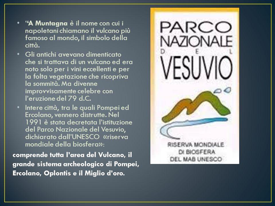 ''A Muntagna è il nome con cui i napoletani chiamano il vulcano più famoso al mondo, il simbolo della città. Gli antichi avevano dimenticato che si tr