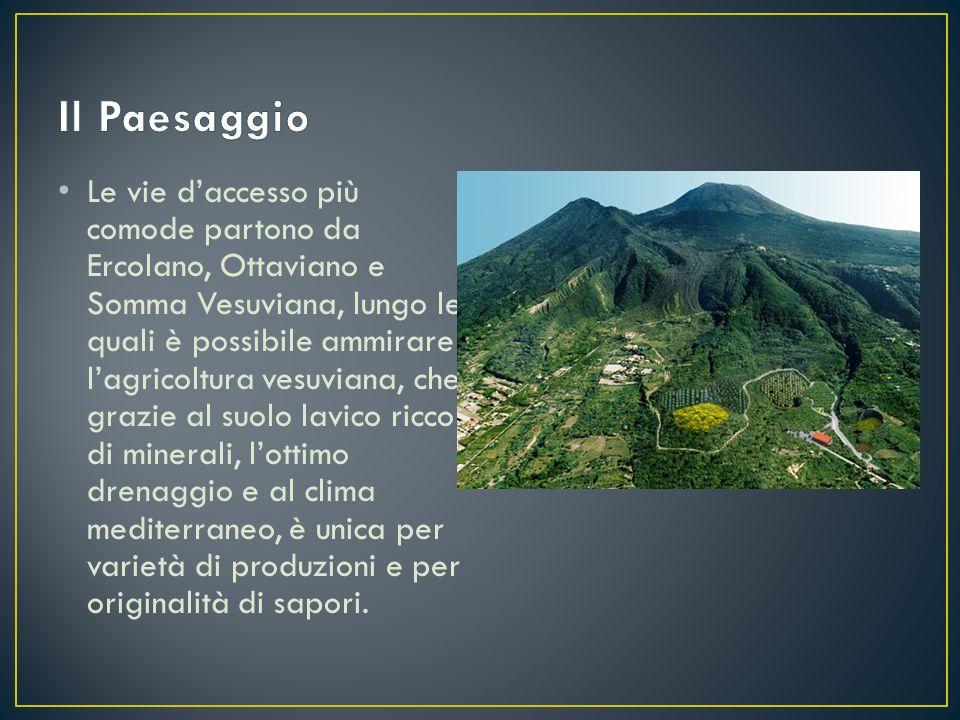 Le vie d'accesso più comode partono da Ercolano, Ottaviano e Somma Vesuviana, lungo le quali è possibile ammirare l'agricoltura vesuviana, che grazie