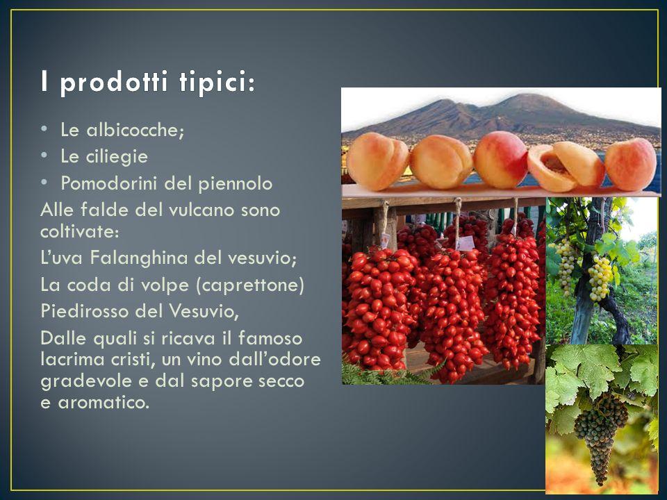 Le albicocche; Le ciliegie Pomodorini del piennolo Alle falde del vulcano sono coltivate: L'uva Falanghina del vesuvio; La coda di volpe (caprettone)