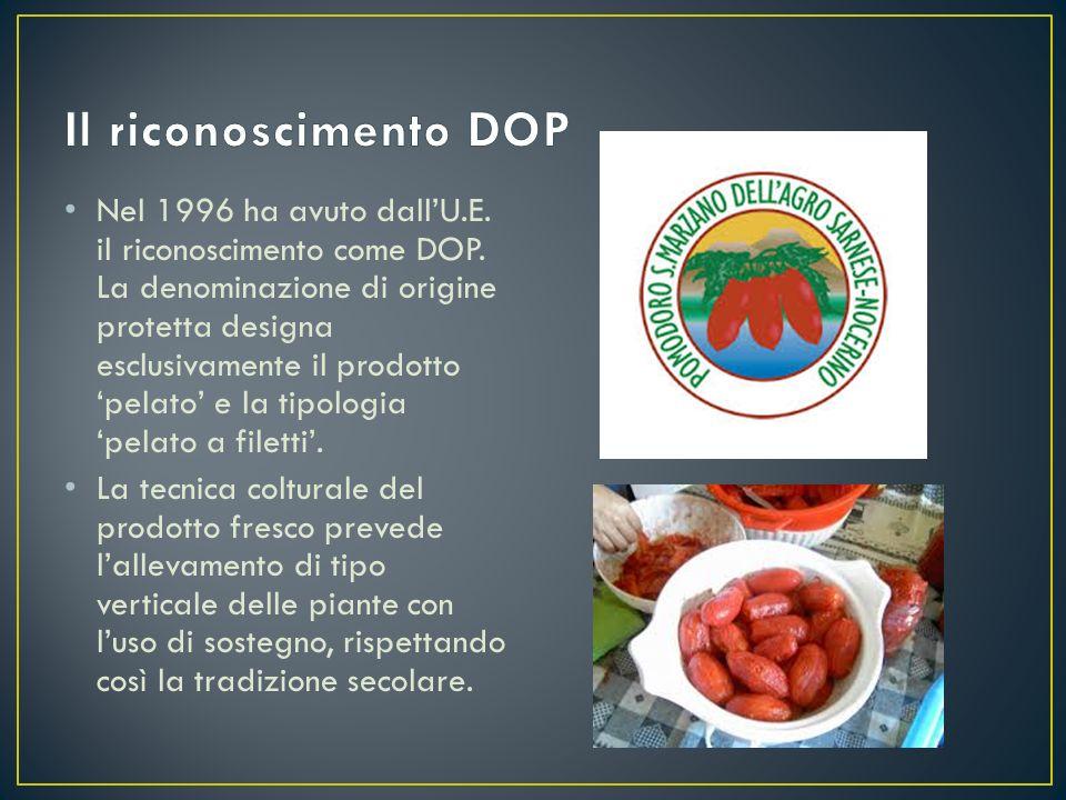 Nel 1996 ha avuto dall'U.E. il riconoscimento come DOP. La denominazione di origine protetta designa esclusivamente il prodotto 'pelato' e la tipologi