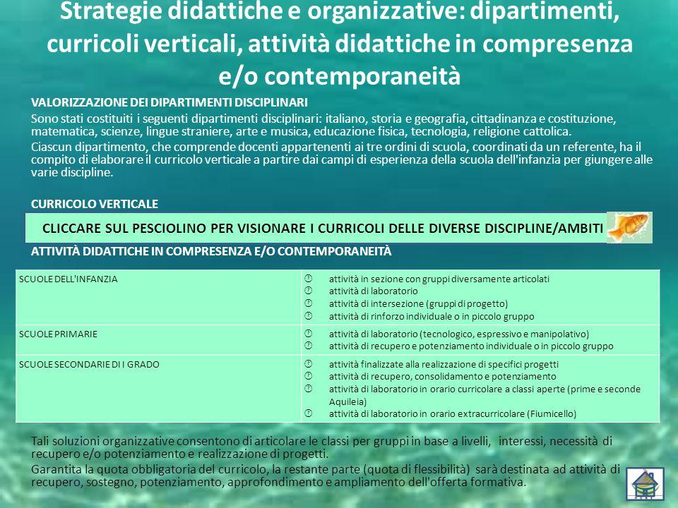 Strategie didattiche e organizzative: dipartimenti, curricoli verticali, attività didattiche in compresenza e/o contemporaneità VALORIZZAZIONE DEI DIP