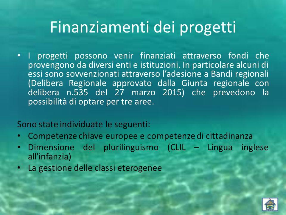 Finanziamenti dei progetti I progetti possono venir finanziati attraverso fondi che provengono da diversi enti e istituzioni. In particolare alcuni di