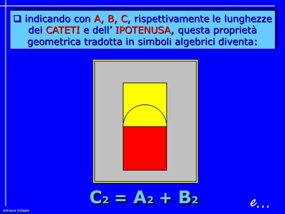 Adriana Volpato Teorema di PITAGORA  in un Triangolo RETTANGOLO il quadrato costruito sull' IPOTENUSA è equivalente alla somma dei sull' IPOTENUSA è