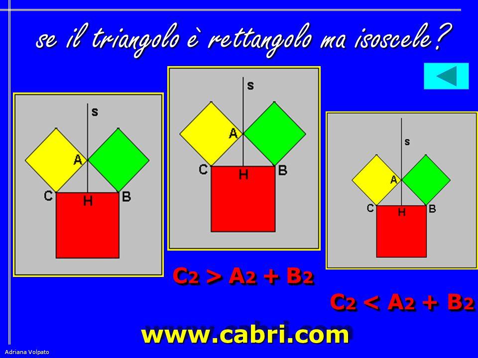 Adriana Volpato  indicando con A, B, C, rispettivamente le lunghezze dei CATETI e dell' IPOTENUSA, questa proprietà dei CATETI e dell' IPOTENUSA, que